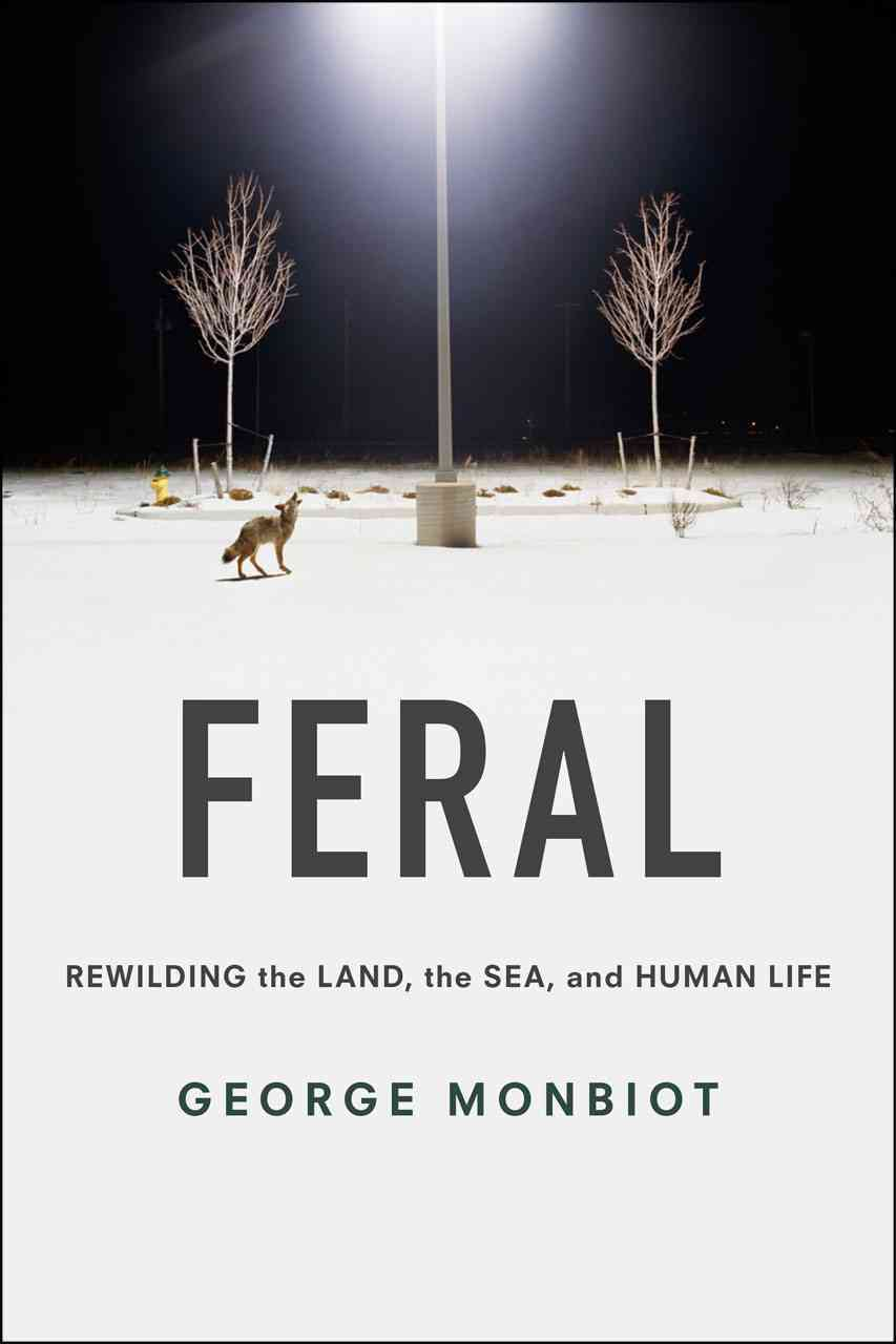 Feral By Monbiot, George/ Monbiot, George (FRW)